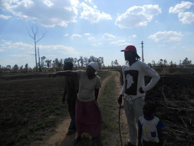 Savanna-grassland, Zimbabwe