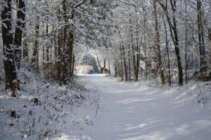 Ontario snow