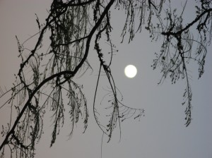 ISOBEL's photo of the moon in Maurituris