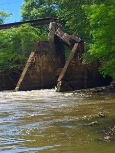Ichawaynochaway Creek, Newton, GA